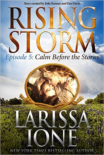BOOK REVIEW  –  Calm Before the Storm  –  Larissa Ione  –  Rising Storm, Episode 5