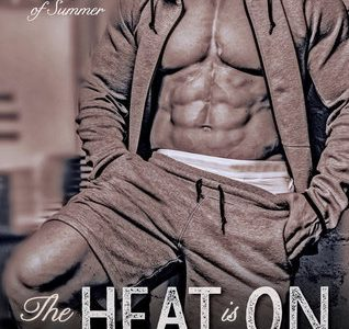 BOOK REVIEW  –  The Heat is On  –  Katie Rose