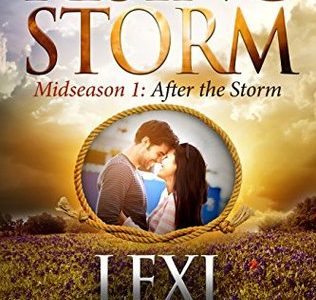 ** Blog Tour / Book Review **  AFTER THE STORM by Lexi Blake