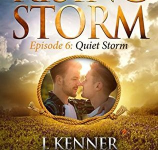 ** Book Review **  QUIET STORM by Julie Kenner (Rising Storm, Season 2, Episode 6)
