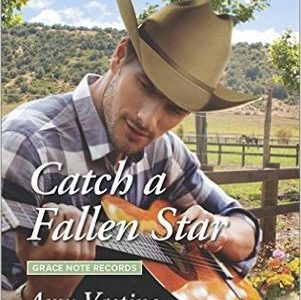 ** Blog Tour / Book Review **  CATCH A FALLEN STAR  Amy Vastine