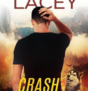 * Review * CRASH AND BURN by Rachel Lacey