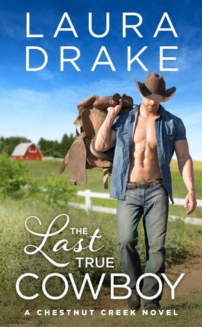 * Review * THE LAST TRUE COWBOY by Laura Drake