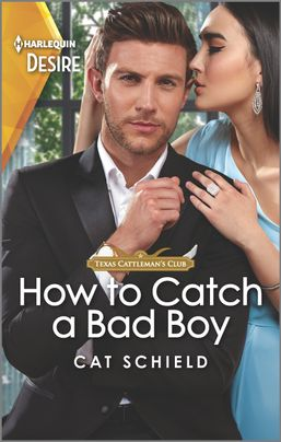* Review * HOW TO CATCH A BAD BOY by Cat Schield